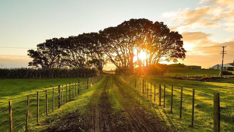 zonsondergang over een weggetje in wei met huisje